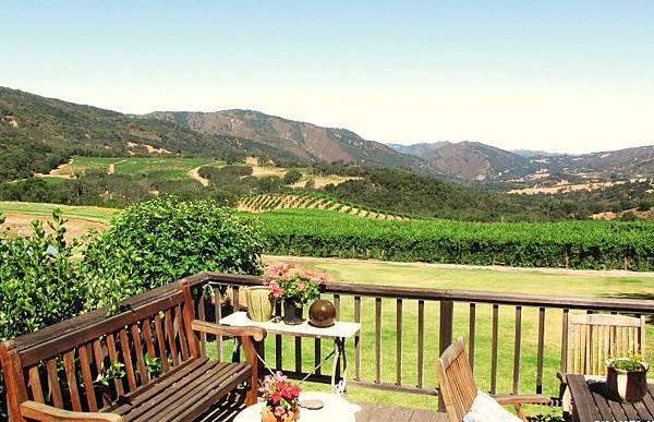 11607 vineyards