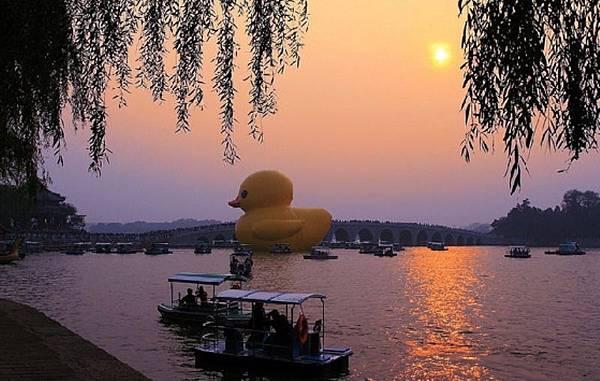 20001 400 北京鴨