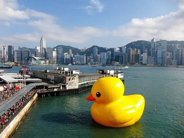 20001 450 香港鴨