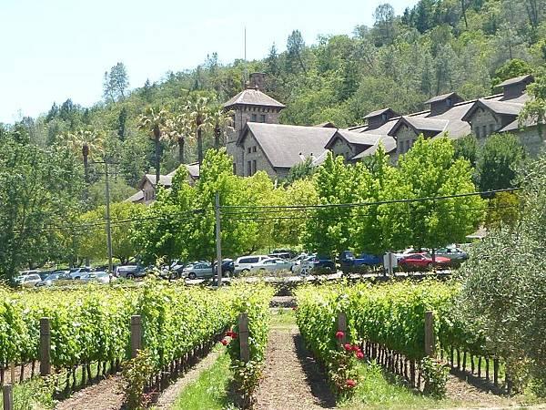 14 230 酒鄉葡萄園