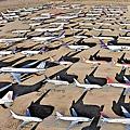 184 305 封存中的飛機.jpg