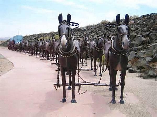 192 900 騾馬車隊模型