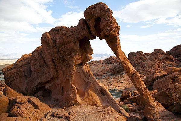 201 020 Elephant Rock