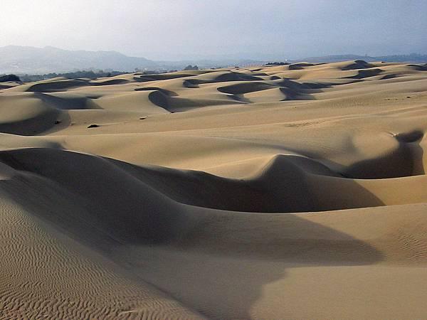 256 010 Oceano Sand Dunes.jpg