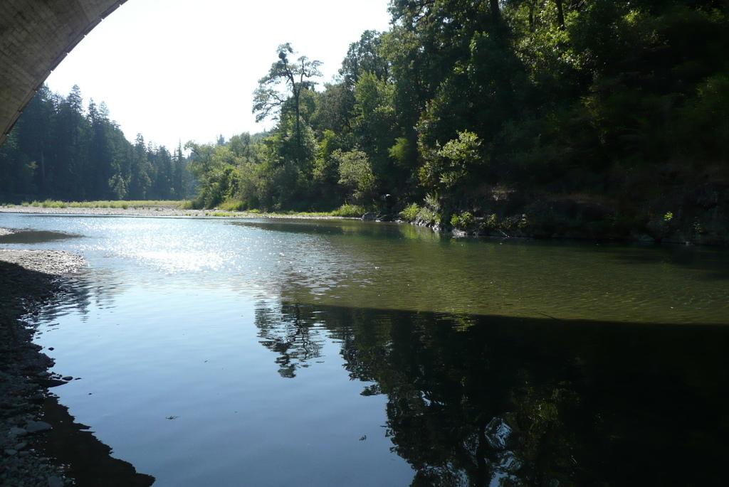 317 010 Eel River.JPG