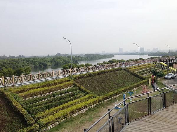 70902 080 山海圳綠道一景,鹽水溪與台江國家公園.jpg