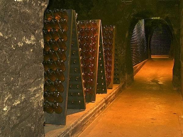 353 010 酒窖.jpg