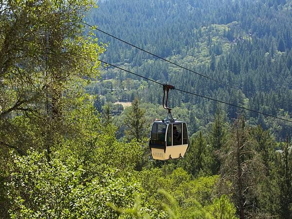 359 110 上山的纜車.jpg