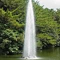 東南植物園-15