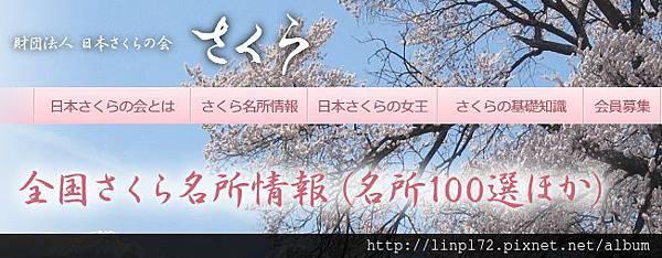 Sakura -100