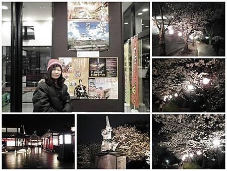 0322-熊本城彩苑夜櫻jpg