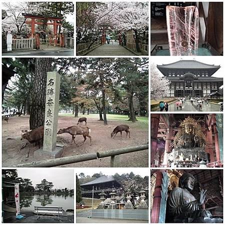 0328-Nara A
