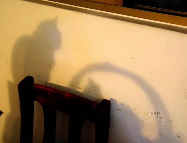 101-0130 Shadow