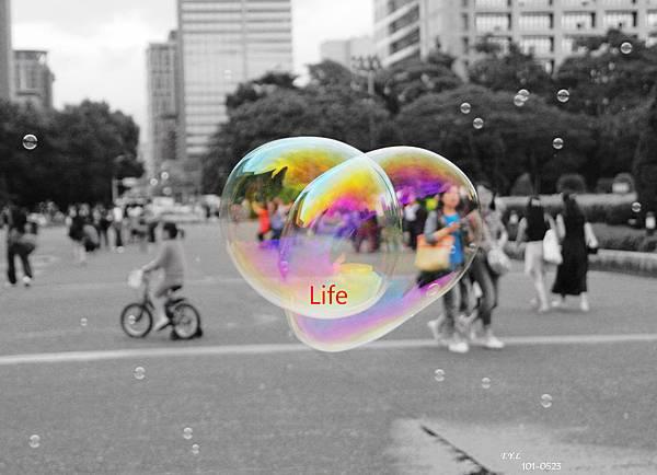 101-0523 Life