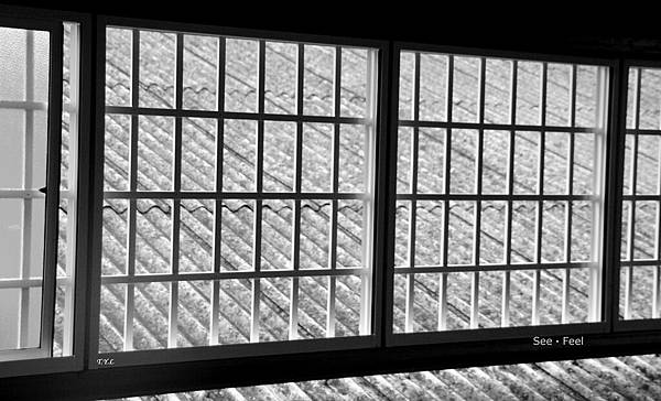 101-0607 Windows
