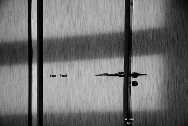 101-0710 See & Feel-1