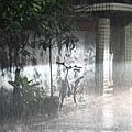 102-0901 Rain