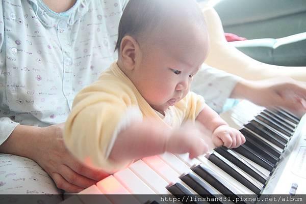 141 我愛玩琴.JPG