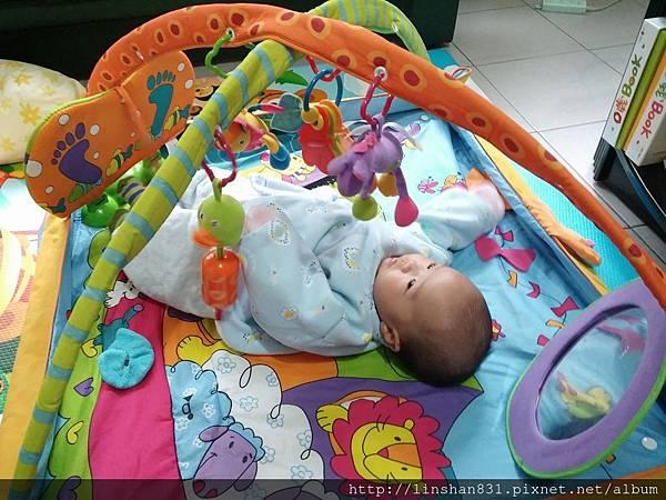 2M 躺著看揮玩具.jpg