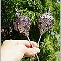 雙槌。飛翔紫鑽款-003.JPG
