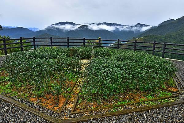 千島湖--23397.JPG