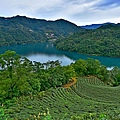 千島湖--23415.JPG