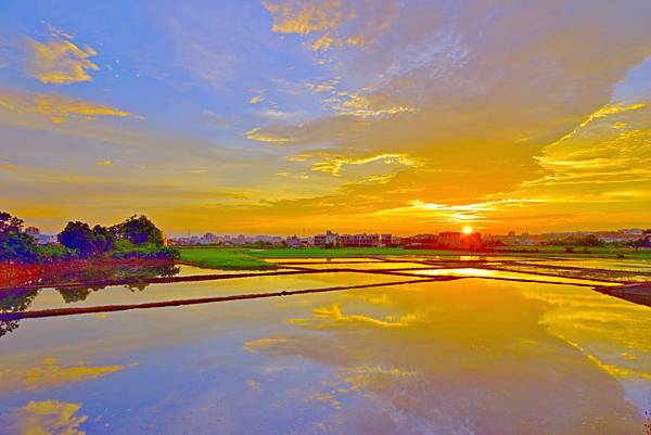 家前夕陽--36554.JPG