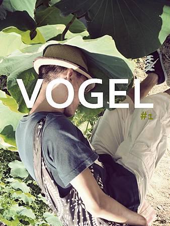 VOGEL#1.JPG