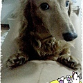 2014-04-17-11-07-30_deco[1].jpg