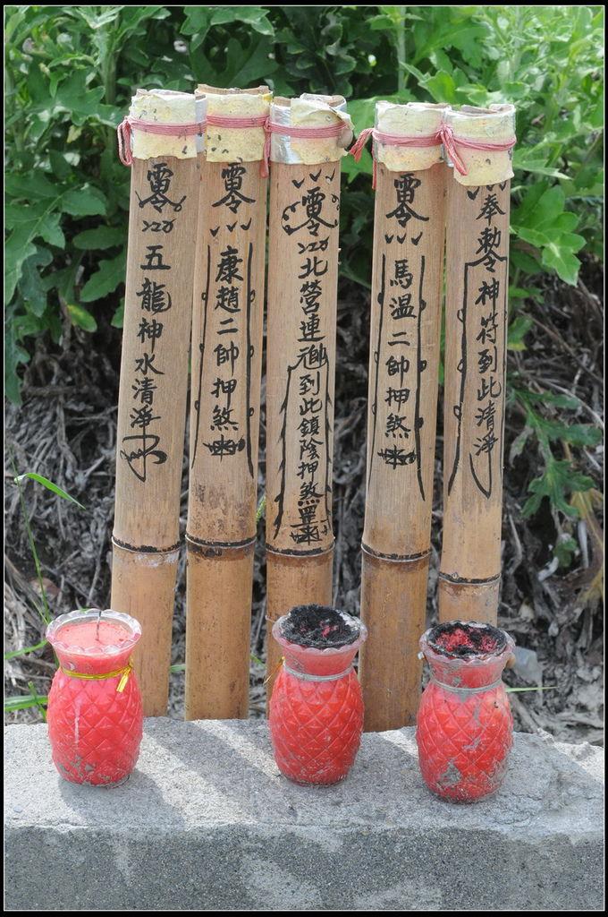 漏蘆-山防風20120425 (247)_調整大小