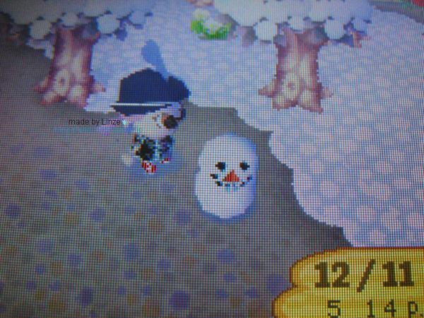 動森_2006雪季03