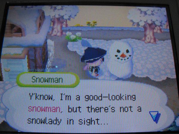 動森_2006雪季04