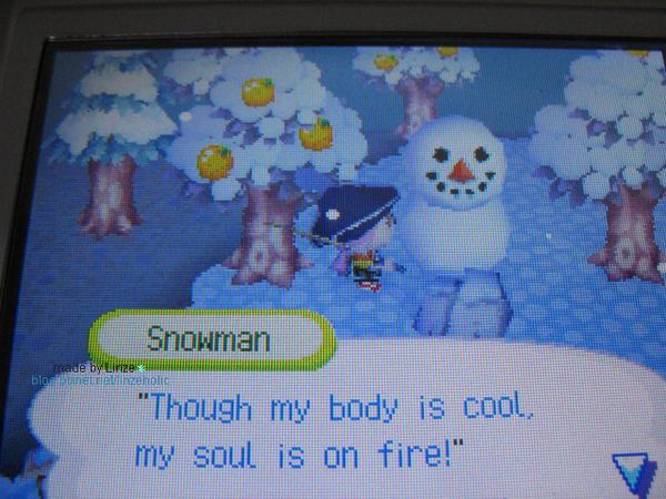 動森_2006雪季07