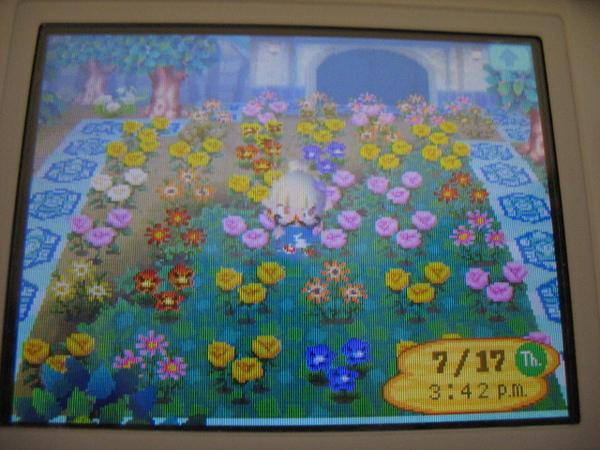 2008.08.29送花