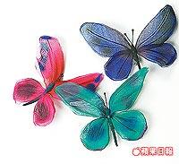 Blumarine烏干紗蝴蝶別針。
