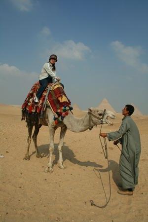 騎駱駝連環動作