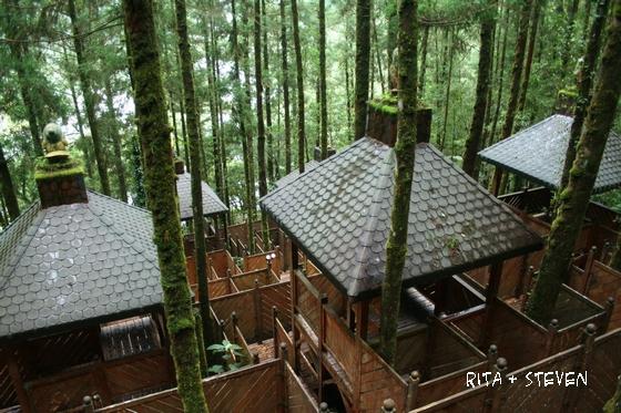 明池國家森林遊樂區-童話森林迷宮