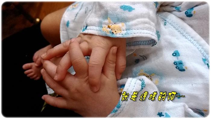 P_20140902_172241_HL.jpg