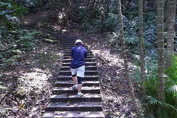 越野-- 依然是樓梯