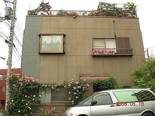 2006年軒軒的薔薇花園②(後院駐車場)