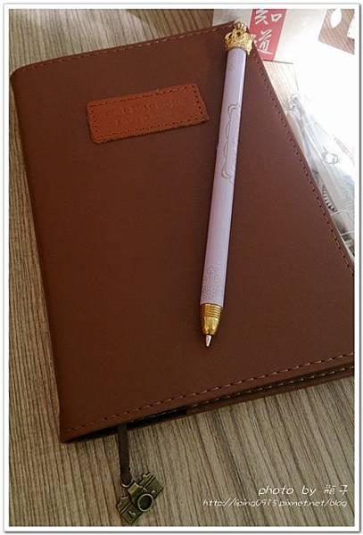Diary14.jpg