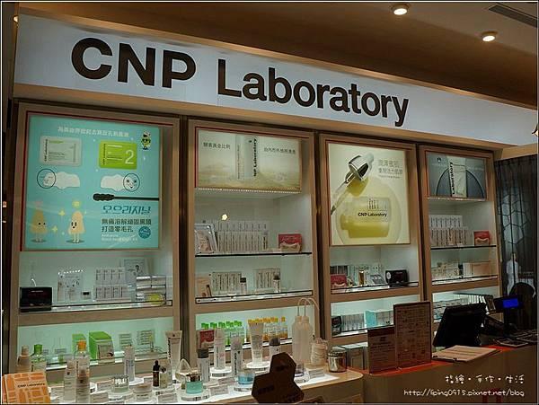 CNP-I-03.jpg