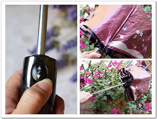 umbrella09.jpg