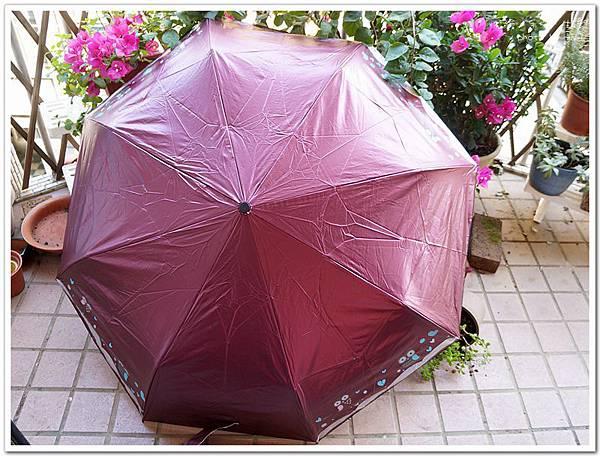 umbrella10.jpg