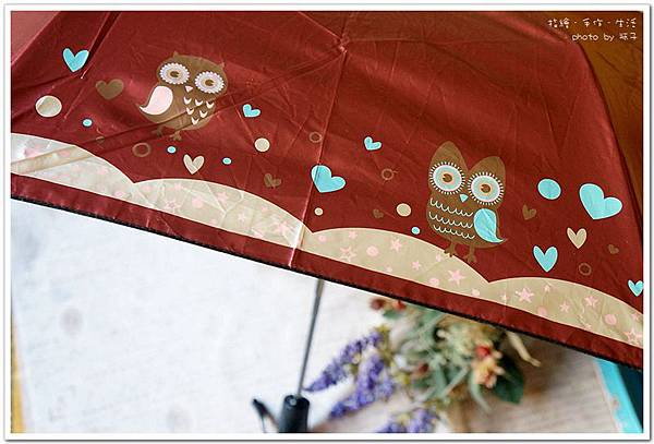 umbrella11.jpg