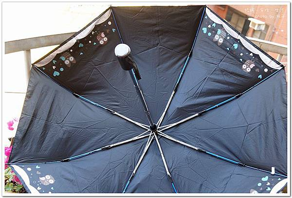 umbrella12.jpg