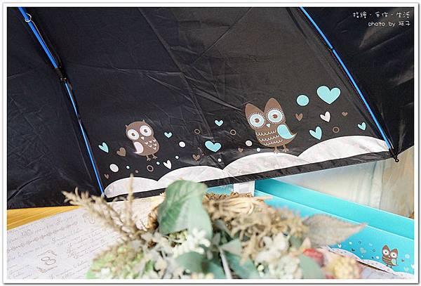 umbrella13.jpg