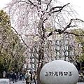 Uenopark01.jpg