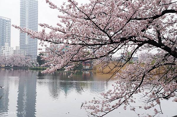 Uenopark03.jpg