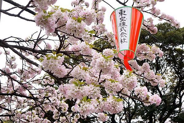 Uenopark15.jpg